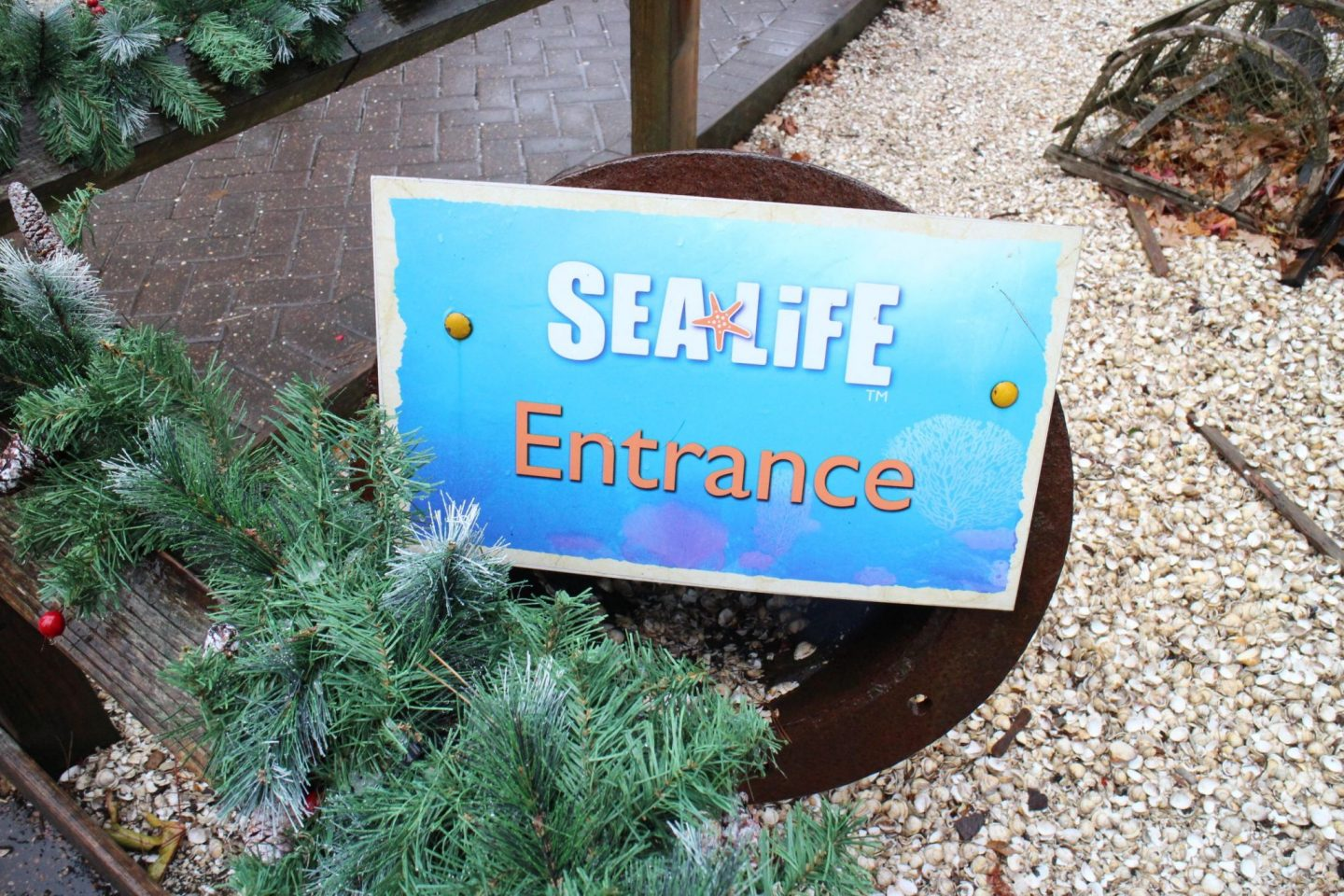 Sea Life Entrance Chessington