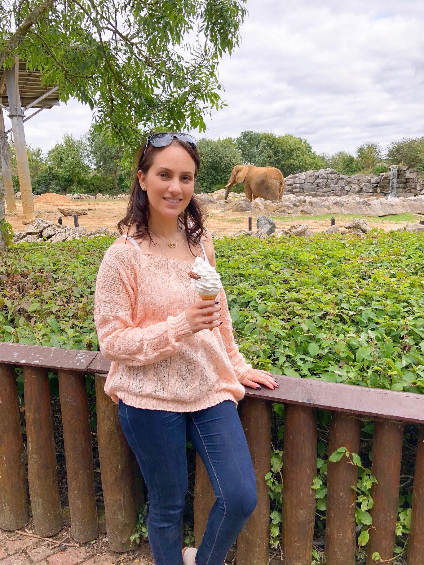 Elephants and Ice Cream