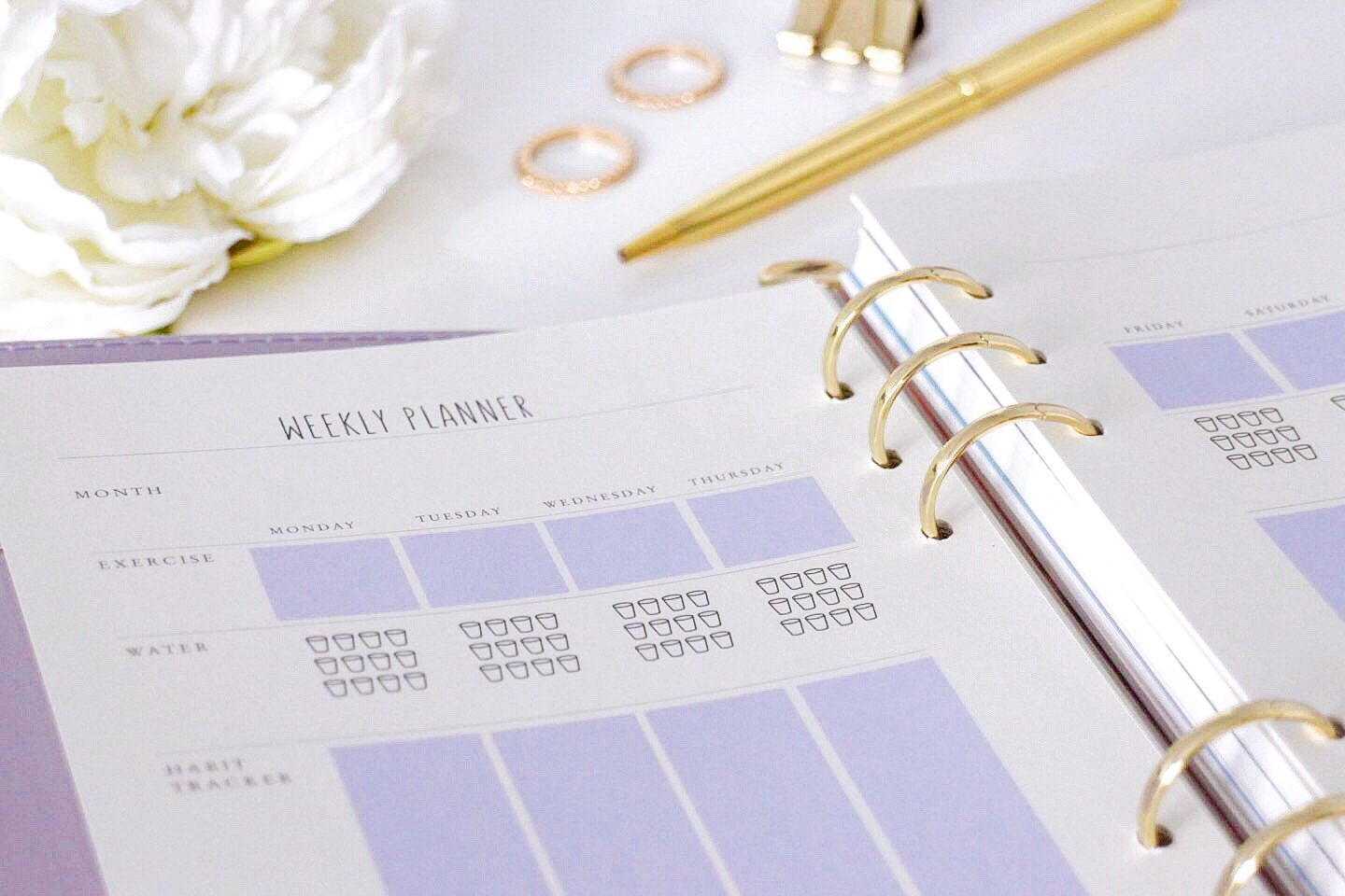 Paper chase Lifestyle Planner