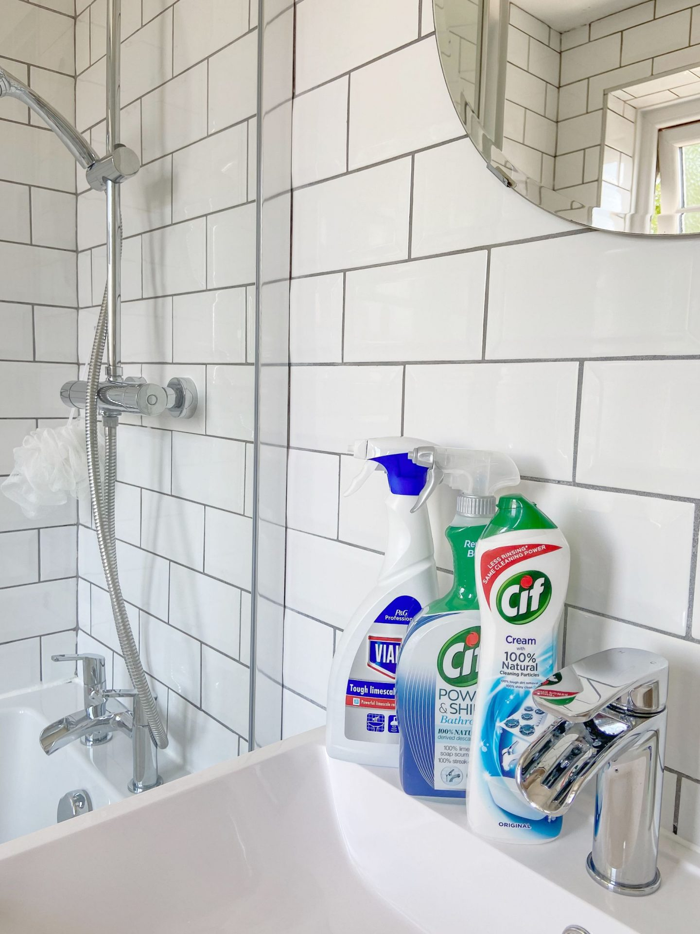 Cleaning Products for Bathroom
